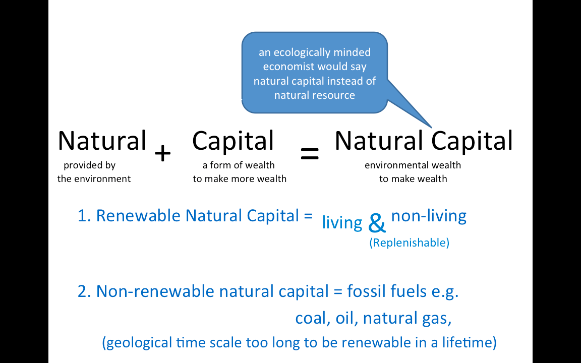 natural capitalism Definition of natural capitalism: a school of capitalist thought that seeks to reward efficiencies and remove artificial market alterations, such as.