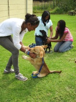 SPCA Theda Suha Aisha